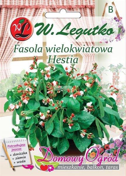 Fasola wielkokwiatowa szparagowa karłowa Hestia (30 g) - Domowy Ogród