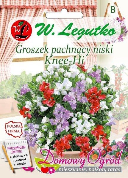 Groszek pachnący Knee-Hi mieszanka (5 g) - Domowy Ogród