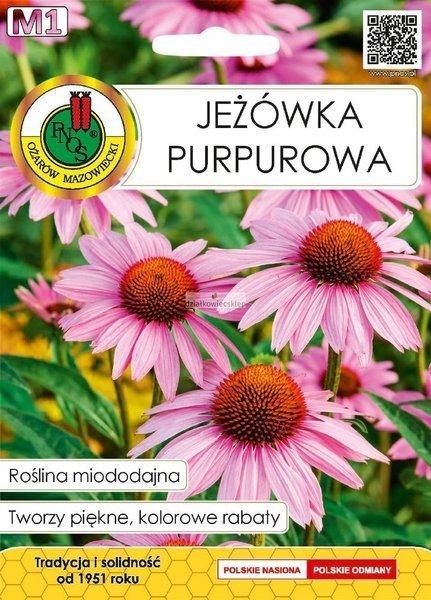 Jeżówka Purpurowa (1 g) - Roślina Miododajna