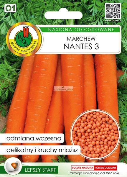Marchew jadalna Nantes 3 (300 nasion)  - nasiona otoczkowane