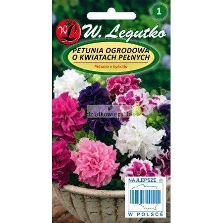 Petunia ogrodowa o pędach zwisających, mieszanka o kwiatach pełnych Polka F2 (50 nasion)