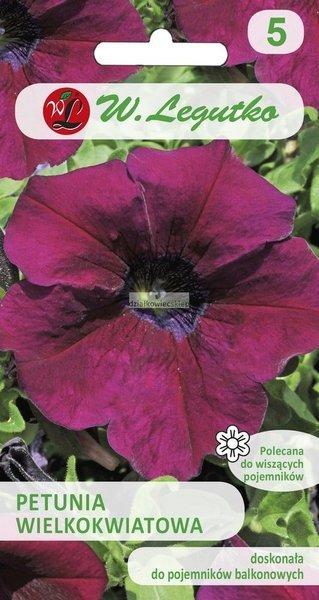 Petunia wielkokwiatowa wiśniowa (0,01 g)