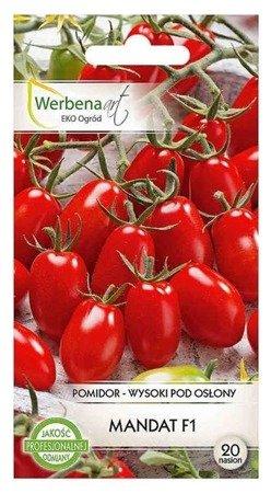 Pomidor wysoki pod osłony Mandat mieszaniec (Solanum lycopersicum L.) 20 nasion