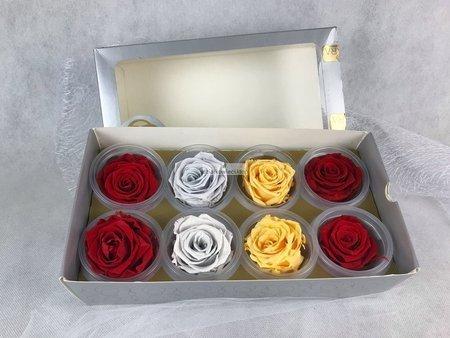 Róże wieczne (czerwone, żółte, jasno fioletowe) 5 cm
