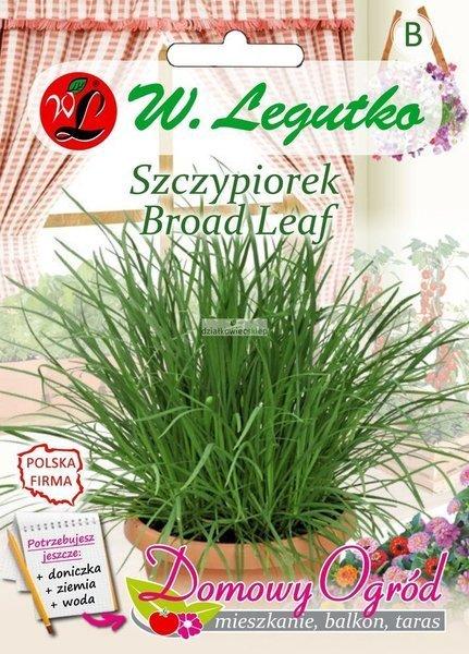 Szczypiorek Broad Leaf (2 g) - Domowy Ogród