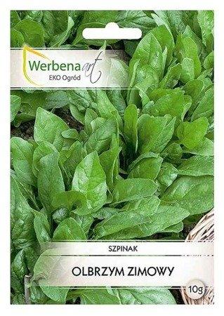Szpinak Olbrzym Zimowy (Spinacia oleracea L.) 10g