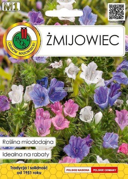 Żmijowiec (1 g) - Roślina Miododajna
